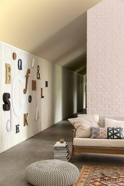 Salon - elementy graficzne