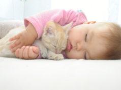 noworodek i kot