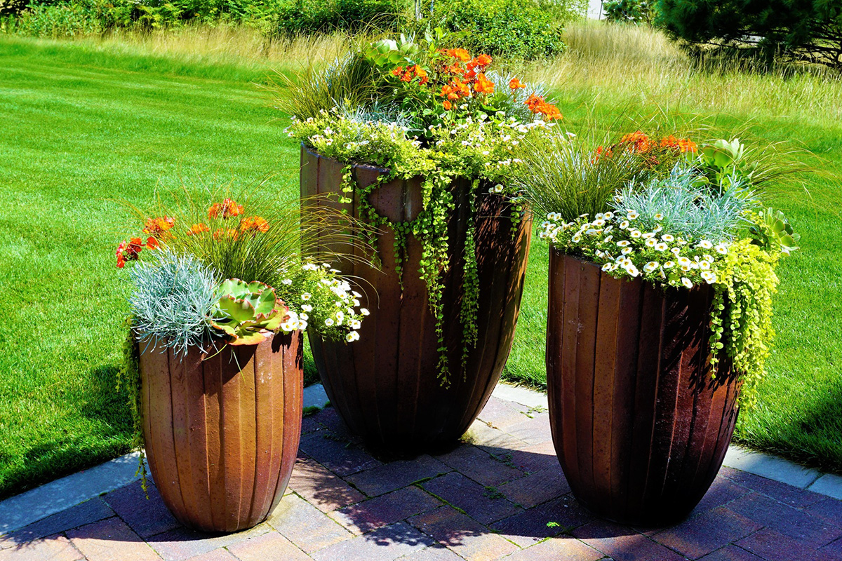 Wybieramy Doniczki Dla Naszych Kwiatów Czikczikcom