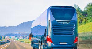 transport na szkolenie