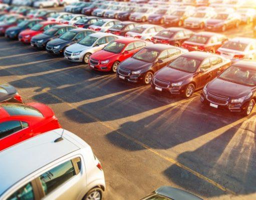 Dużo samochodów