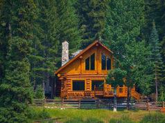 dom w lesie