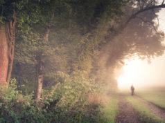 5 tras idealnych na jesienną wycieczkę na dwóch kółkach