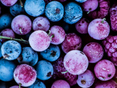 zamrożone owoce leśne