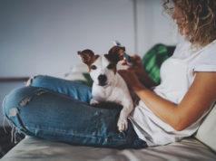 kobieta na kanapie z psem na kolanach