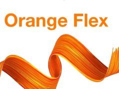 Orange flex logo