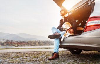 brodaty mężczyzna siedzący w bagażniku samochodu z psem