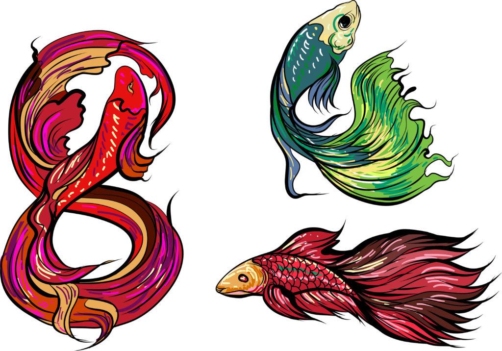 znak nieskończoności rybki syjamskie