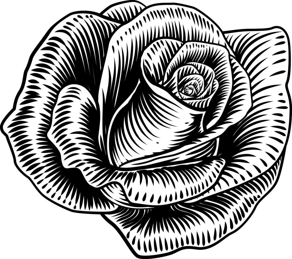 róża projekt tatuażu