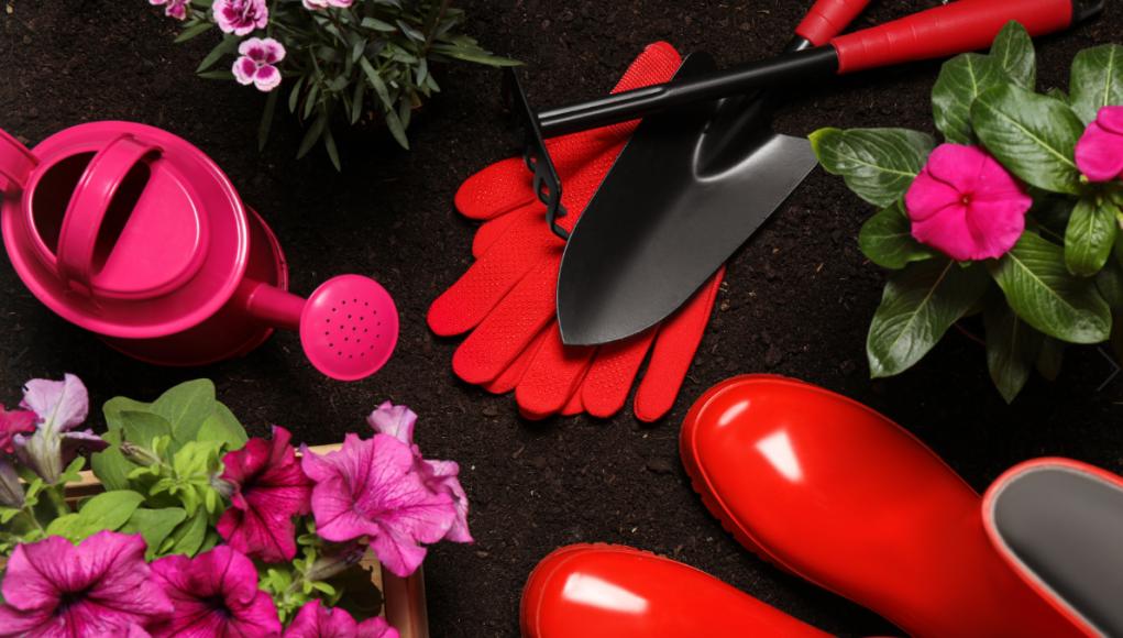 kolorowe narzędzia ogrodowe