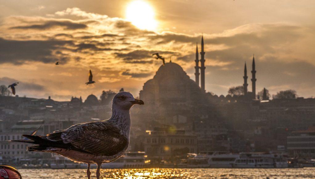 turcja panorama